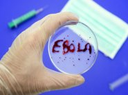 В США начинаются испытания на людях канадской вакцины против вируса Эбола